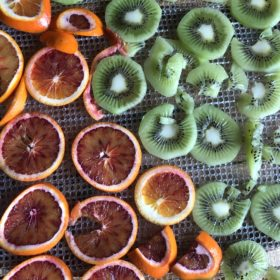 酵素が生きてる!無農薬、省農薬の果物を使ったロードライフルーツ アラカルト